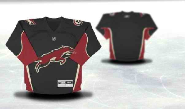 Phoenix Coyotes Youth Customized Black Third Jersey
